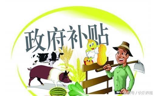 河北沧州养殖有补贴吗 沧州新能源汽车补贴
