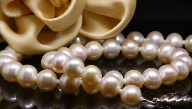 广东珍珠养殖
