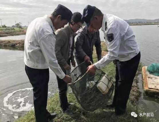 湖南黑鱼养殖场