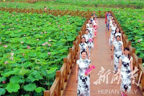 湖南衡阳泥鳅青蛙养殖基地