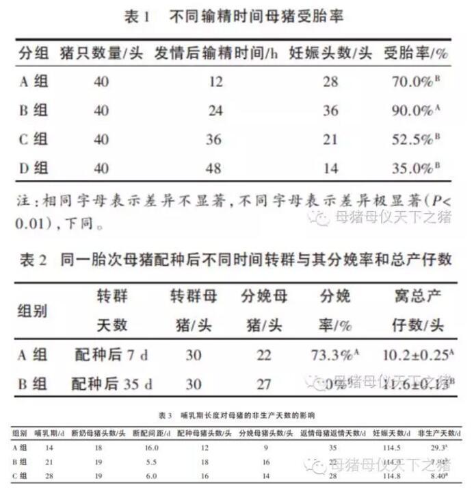 王爱国:输精时间、配种后转群时间和哺乳期长短对母猪年生产力的影响