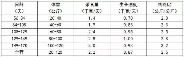 最全猪场常用数据参照表格!