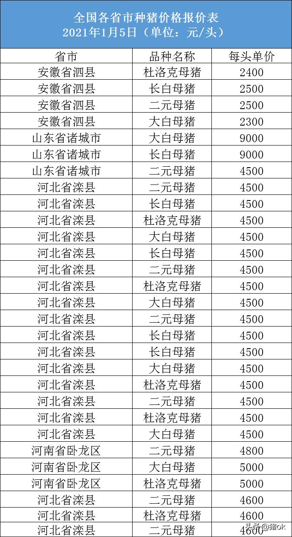 2021年01月05日全国各省市种猪价格报价表