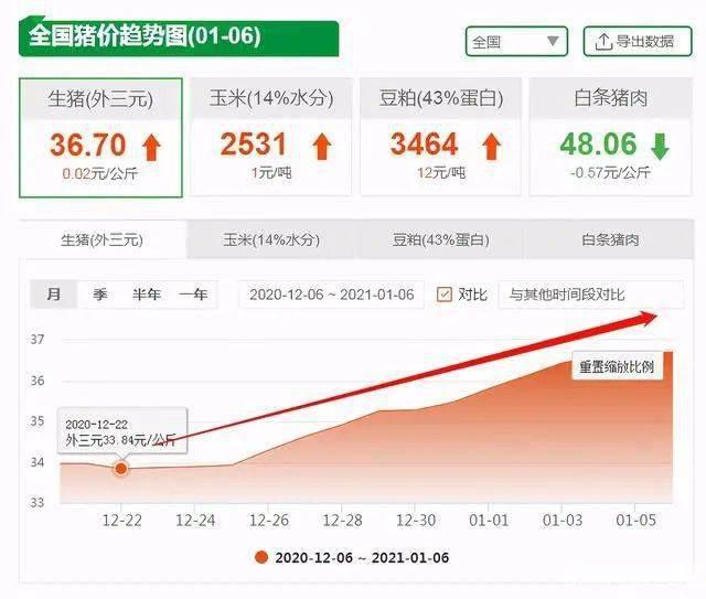 猪价大涨28%,多地破30元,2万吨冻肉来袭,春节猪肉会跌?