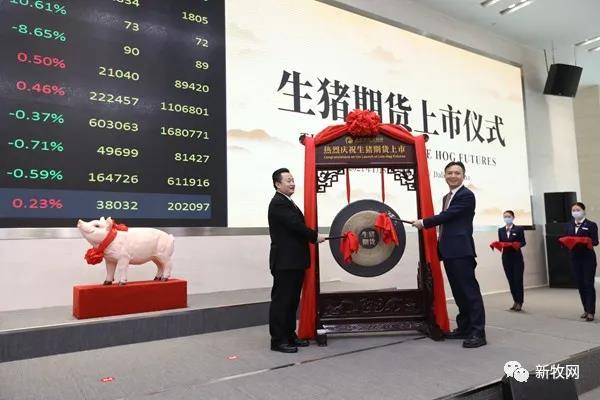 生猪期货上市首日竟跌停!专家预估下半年猪价仅25元/公斤
