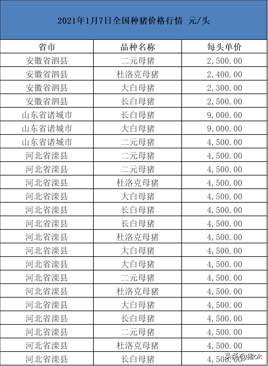 今日种猪价格:2021年1月7日全国种猪价格行情