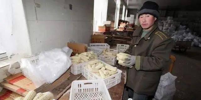 春节前,3样东西可能涨价,农民又不得不买,请早做准备