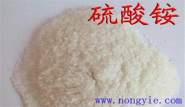 硫酸铵是什么肥料 硫铵和硫酸铵的区别
