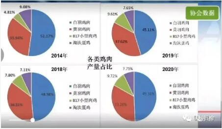 2020年家禽业生产总结分析及2021年发展趋势研讨