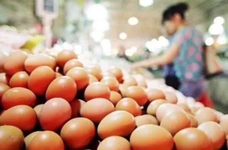 一斤蛋多少钱才保本?一算吓一跳!