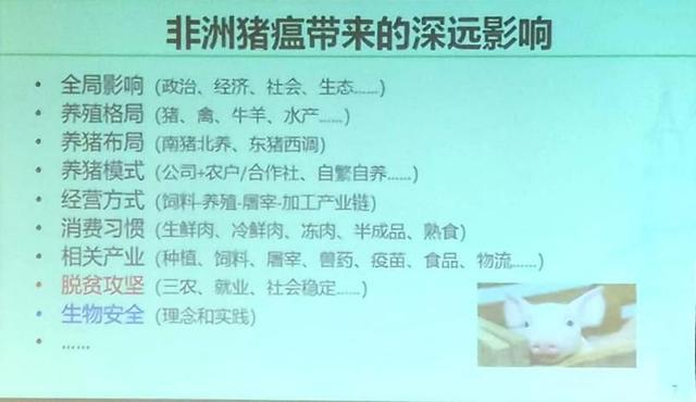 仇华吉研究员:对非洲猪瘟要科学认知、系统思维、综合防控